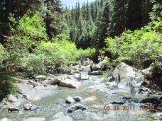 焉支山森林公园-山丹-4150412