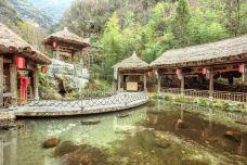 天生桥-神农架-doris圈圈