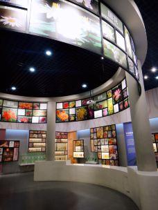 北京自然博物馆-北京-hi绿野仙踪