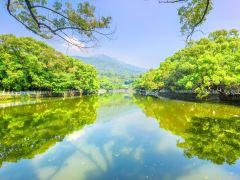 初春出游,惠州休闲山水1日游