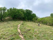 野三坡白草畔景区-野三坡-老鹰在飞翔