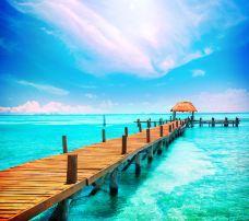 飞鱼海滩-坎昆-尊敬的会员
