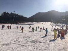 芝山森林滑雪度假村-利川市-bebbu