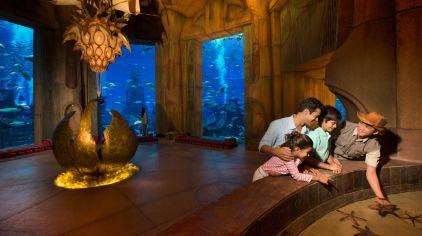 亚特兰蒂斯失落的空间水族馆 the lost chambers aquarium (9)