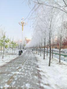 德惠市植物园-德惠-M22****7503