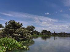 奈瓦沙湖-纳库鲁-老肯小峰