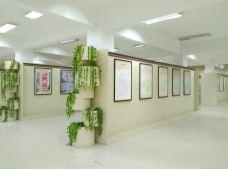 轩辕黄帝史迹展览馆-仙都景区-牛奶海