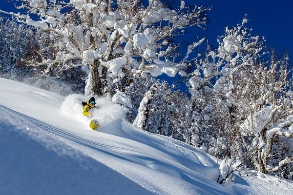 北海道 KIRORO 喜樂樂滑雪場纜車券