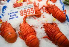 布里斯班美食图片-澳洲龙虾