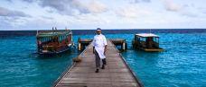 马尔代夫-尊敬的会员