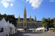 维也纳市政厅-维也纳-霸气花花帝