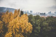 武汉大学-2678-武汉大学-武汉-邵宇迪