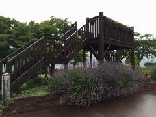 八木崎公园-富士河口湖町-188****4058