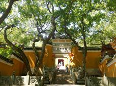 杨枝禅院-普陀山-霸气花花帝