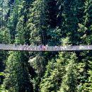 Capilano Suspension Bridge Ticket + Shuttle