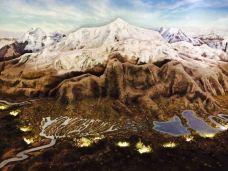 青藏高原自然博物馆-西宁-M26****124