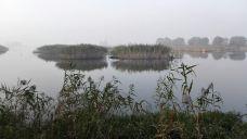 大纵湖-盐城-e09****57