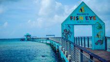 鱼眼海洋公园