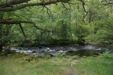 湖区国家公园-英国-Susan瘦不下来