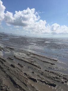 海上迪斯科休闲旅游区-如东-泡泡鱼2