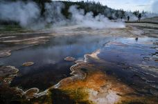 上间歇泉盆地-黄石国家公园-doris圈圈