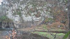 蔚山大谷里盘龟台岩刻画