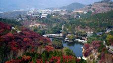 红叶谷-济南-Chanmaomi