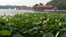 新南戴河国际娱乐中心-南戴河-游客