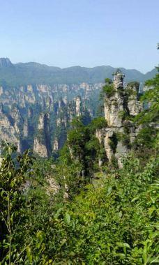 西海峰林-武陵源区-好好生活日日向前
