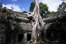 柬埔寨-Ran卍