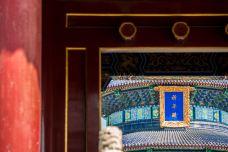 天坛-北京-doris圈圈