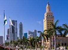 自由塔-迈阿密-湖绿紫