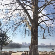 雨山湖-马鞍山-M24****364