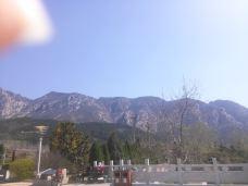 峻极峰-嵩山-roose5561384
