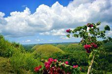 菲律宾-祁斐