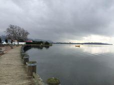 罗托鲁瓦湖-罗托鲁瓦-美梦成真