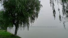 阳澄湖-阳澄湖-何游天下