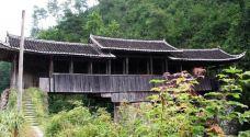 文重桥-泰顺-137****4573