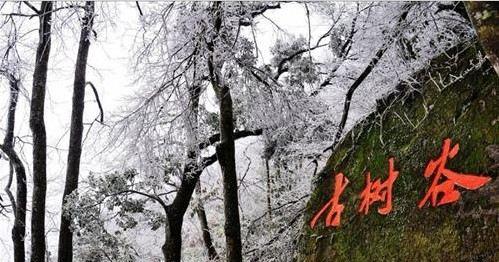 清遠金子山原生態旅游風景區