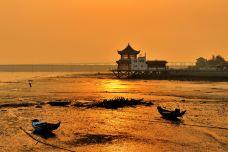 沙滩森林公园-甘南-_CFT01****2327634