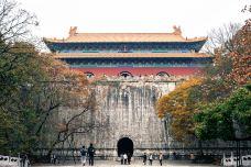 南京-蓝木