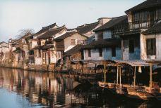 西塘59-西塘风景区-西塘-赖宝小乖