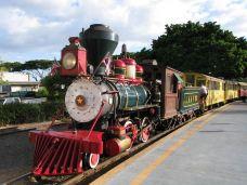 甘蔗火车-夏威夷-Oo陛下oO