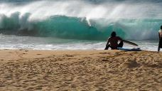 白沙滩-夏威夷-兔爺