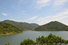 九龙湖景区-镇海区-日月光华