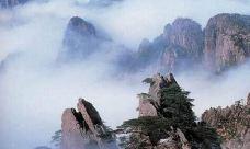 紫石峰-黄山风景区-尊敬的会员
