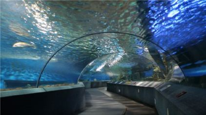 南京海底世界04