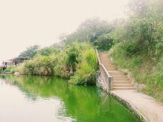 奇洞温泉小镇-英德-_WeCh****04501