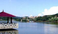 南山湖省级风景名胜区-嵊州-盲龟_浮木