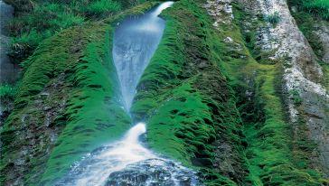 p48泉瀑峡-流